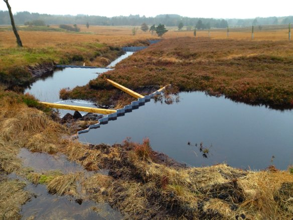 New dams on drainage ditch working well on at Fannyside Muir (c) Scott Shanks